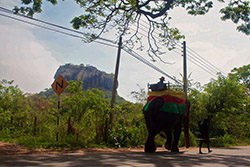 Sigirya-Rock-and-a-badly-parked-elephant-small